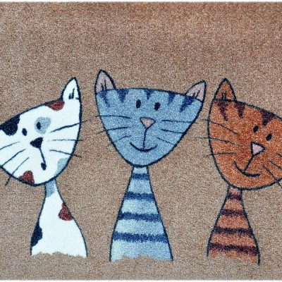 katten trio